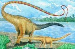 世界上最长的恐龙,地震龙体长可达67米
