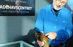 世界上最大的牡蛎,丹麦巨型牡蛎重达2公斤