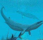 世界上最早的鲸鱼,古蜥鲸祖先竟是中兽