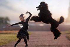 世界上跳得最高的狗,羽毛能跳191.7厘米高