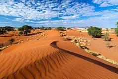 世界上最古老的沙漠:纳米布沙漠