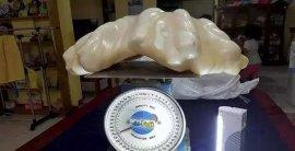世界上最大的天然珍珠,重68斤价值6.6亿元