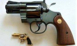 世界上最小的左轮枪,瑞士迷你手枪长仅5.5cm