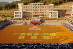 世界上最大的水果拼图,面积达2200平方米
