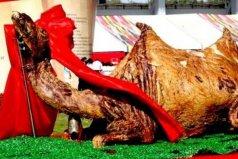世界上最大的一道菜,烤骆驼你吃过没?