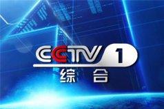 世界上电视频道最多的电视台 中央电视广播总台