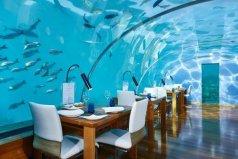 世界十大特色奇异餐厅,Ithaa海底餐厅居首位