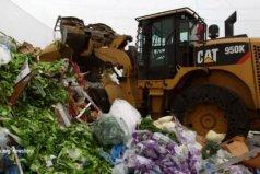 最浪费食物的十大国家,美国第一英国第七