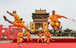 中国武术十大排名,少林功夫位居榜首