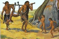 地球上十大进化最完美的动物,人类上榜