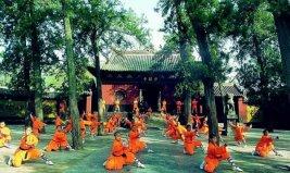 最流行的十大中国武术,少林功夫居榜首