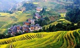 中国十大最美梯田排名,哈尼梯田上榜