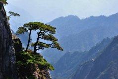 黄山市有什么好玩的景点?黄山市十大旅游景点排名