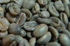 世界十大顶级咖啡豆排行榜:蓝山咖啡排在第二名
