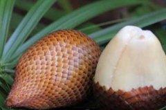 世界上最稀有的十种水果:蛇皮果、洛神果上榜