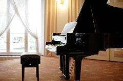最常见的十大西洋乐器:钢琴夺冠,小提琴第三