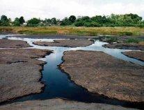 世界上最不安分的湖:彼奇湖全部是沥青